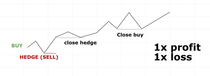 hedging example 3