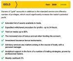 binomo standard account