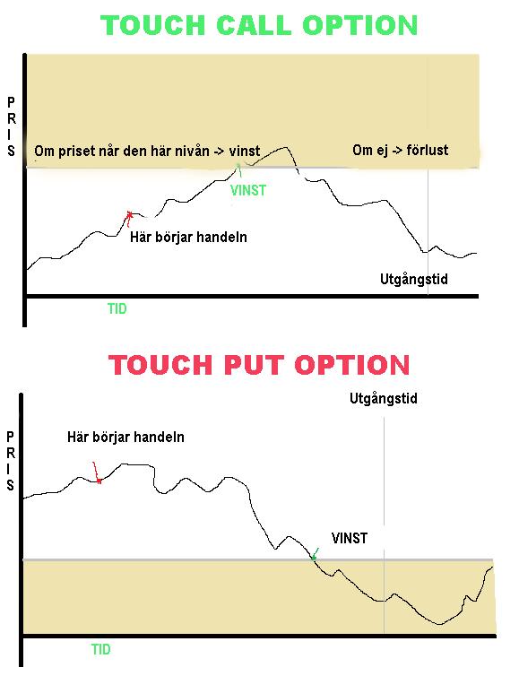 Typer av optioner